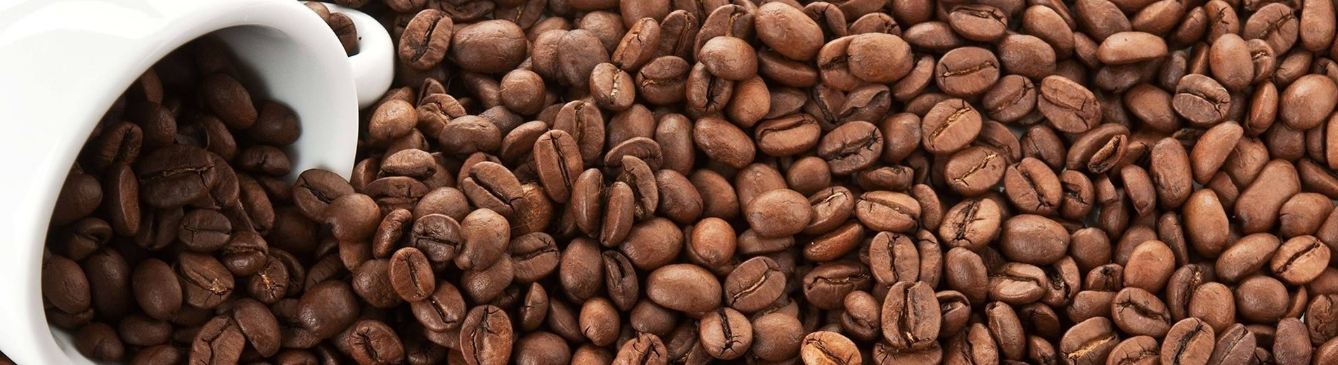 Caffè Elmokado
